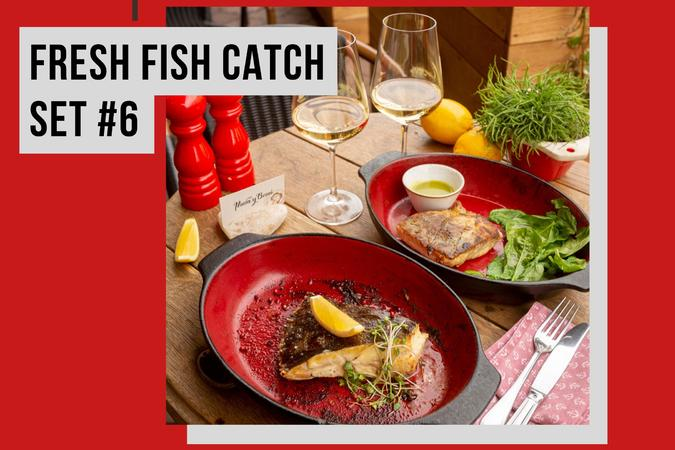 FRESH FISH CATCH SET